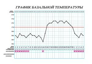 Базальная температура - что это