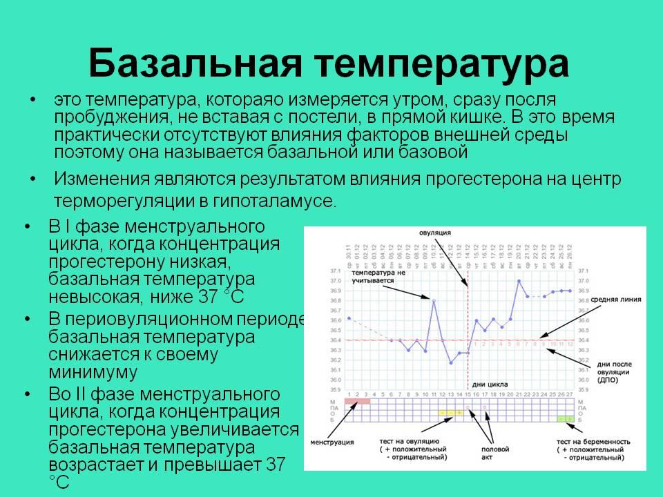 Правильный график базальной температуры фото