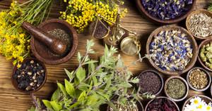 Какие растения снижают вес