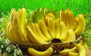 Бананы при беременности на ранних сроках