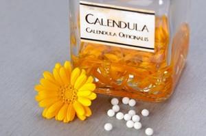 Календула: полезные свойства. Рецепты применения масла календулы от прыщей