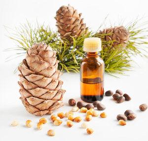Правила применения кедрового масла