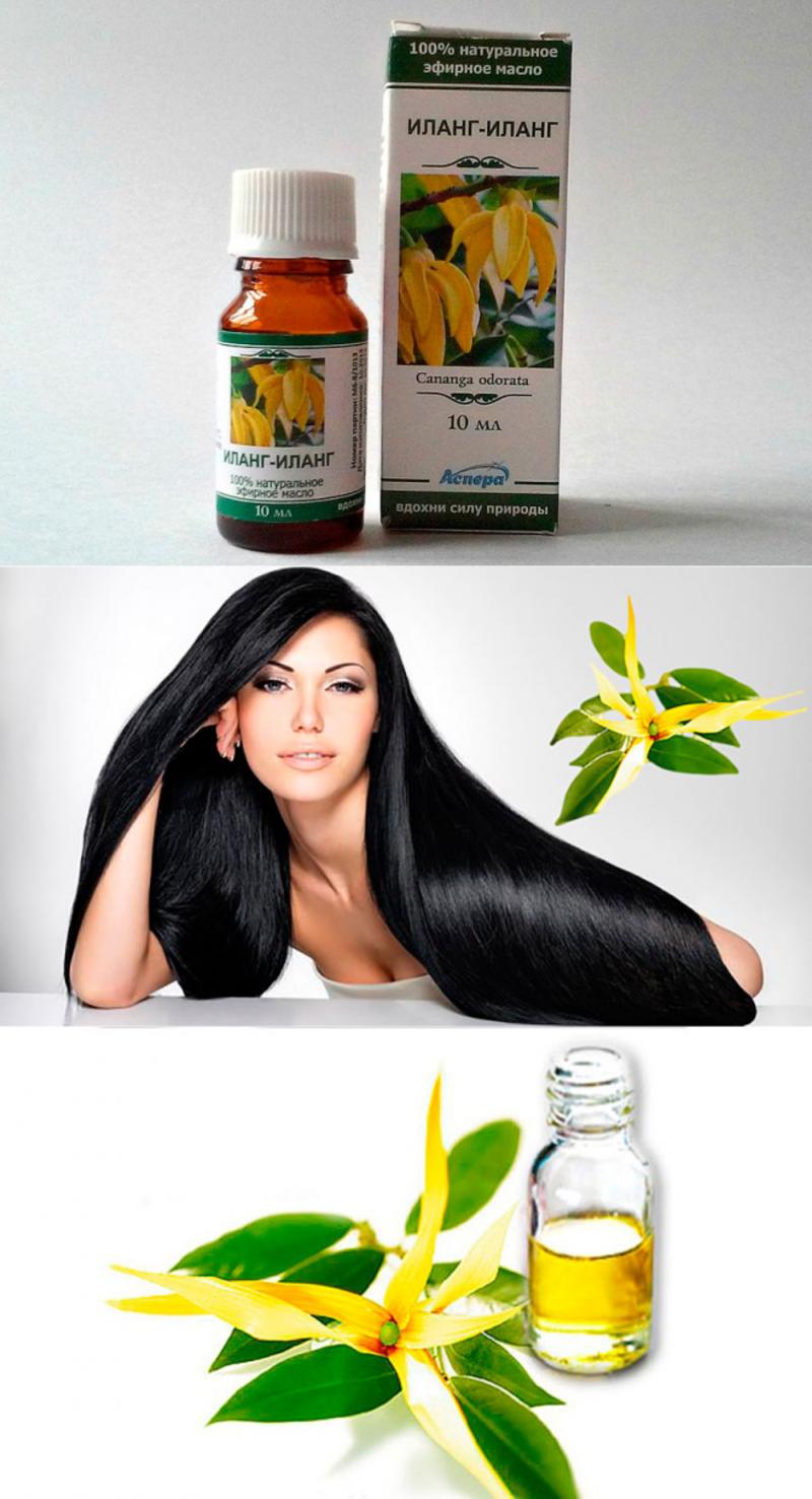 Отзывы про эфирное масло Иланг-Иланг для волос: кому и от чего оно помогает