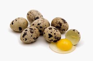 Лечение сырыми перепелиными яйцами