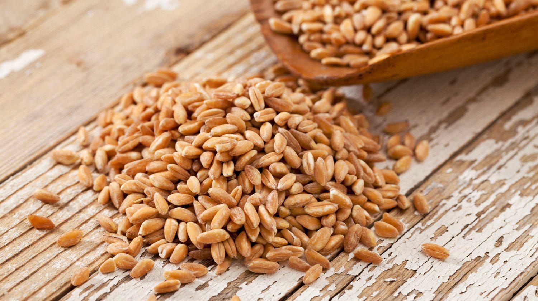 Полба — польза и вред, как готовить, полезные свойства для похудения