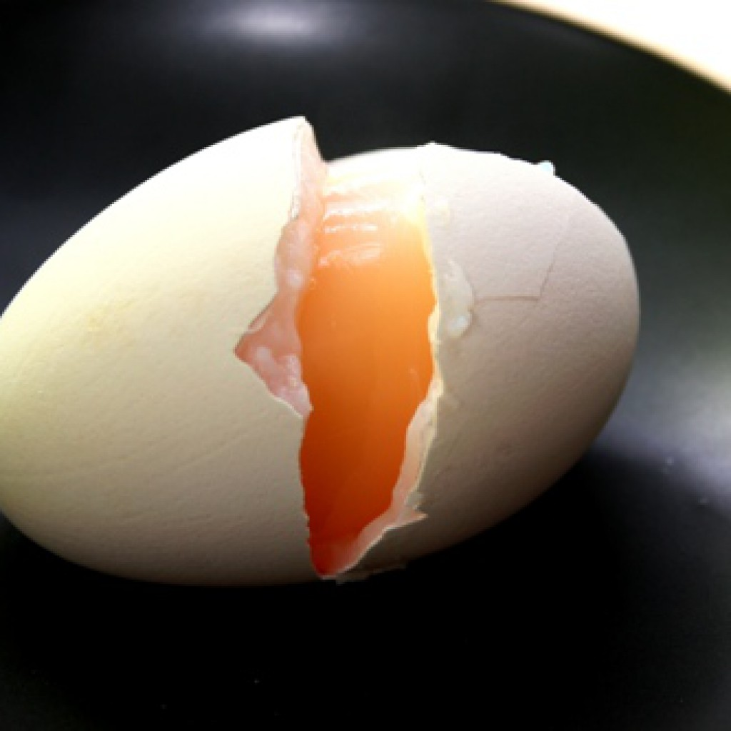 Гусиные яйца: полезная информация и рецепты